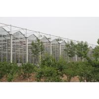 承接荆州智慧农业温室大棚自动化育苗温室玻璃智能温室